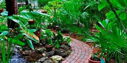 Introduction to Florida-Friendly Landscaping™ - Introduction To Florida-Friendly Landscaping™ – Open Partnership